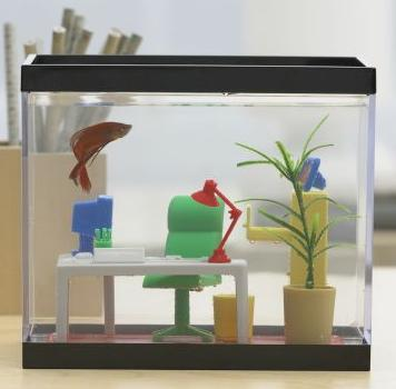 Office Fish Tank Geeknews