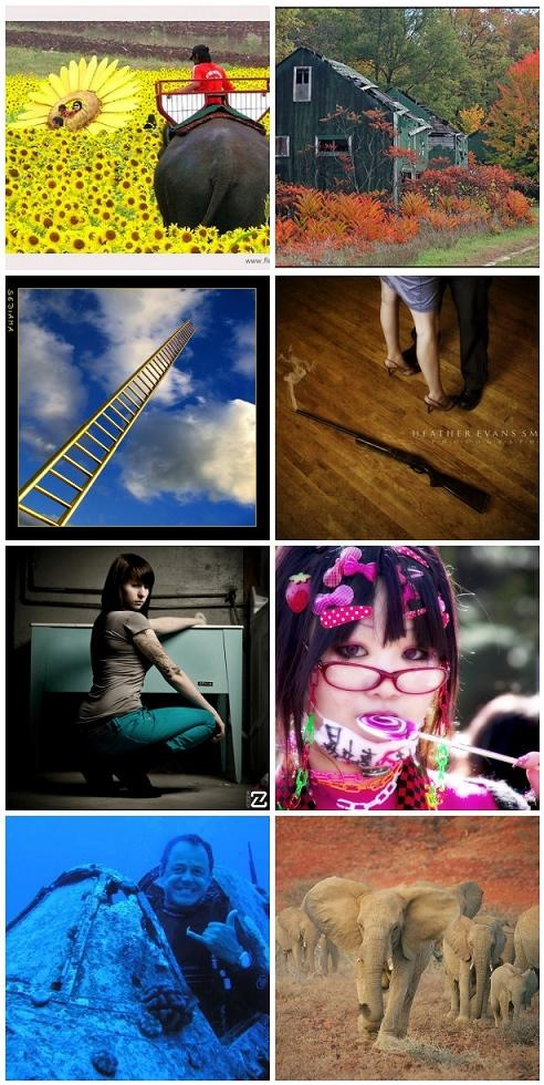 Flickr_mosaic 11-10-08